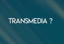 What is transmedia fiction ?